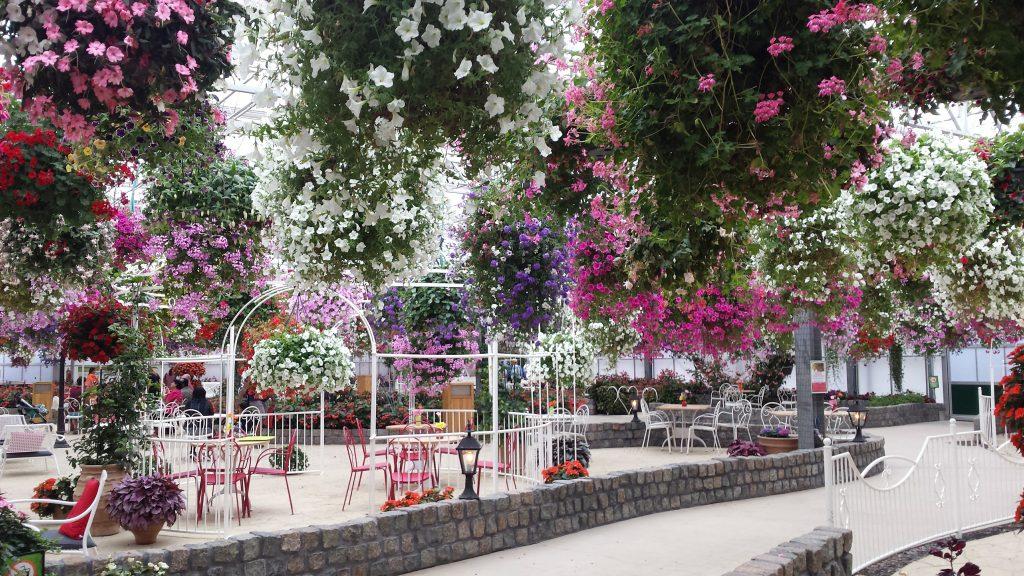 Uitstapje met kinderen naar de Orchideeën Hoeve -Zwevende bloementuin